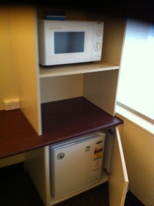 Microwave and fridge
