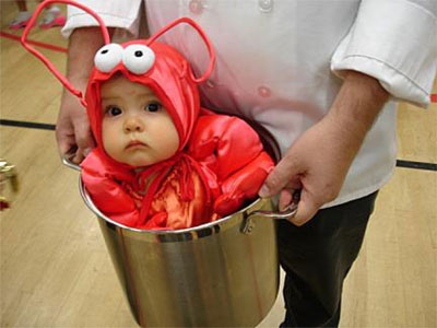 Baby lobster in bucket