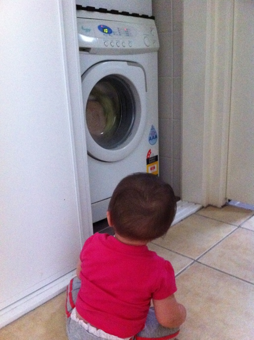 Arddun watching the washing