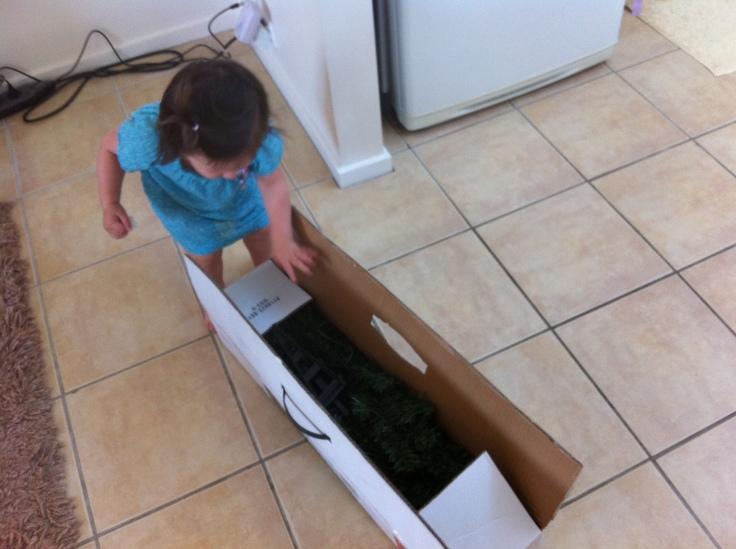 Arddun opens the Christmas Tree box
