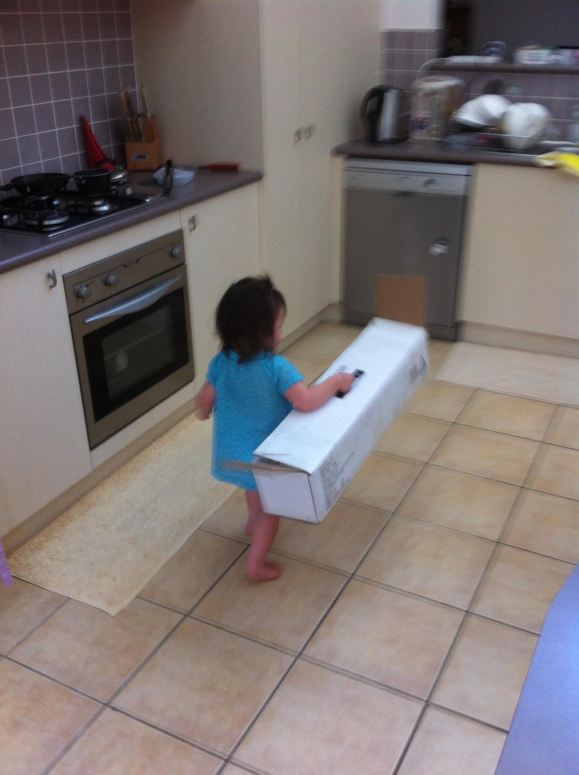 Arddun walks off with empty Christmas tree box