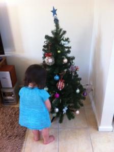 Arddun surveys the finished Christmas tree