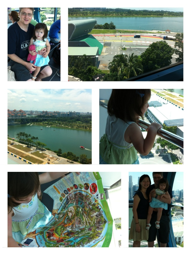 Hibberds on Singapore Flyer