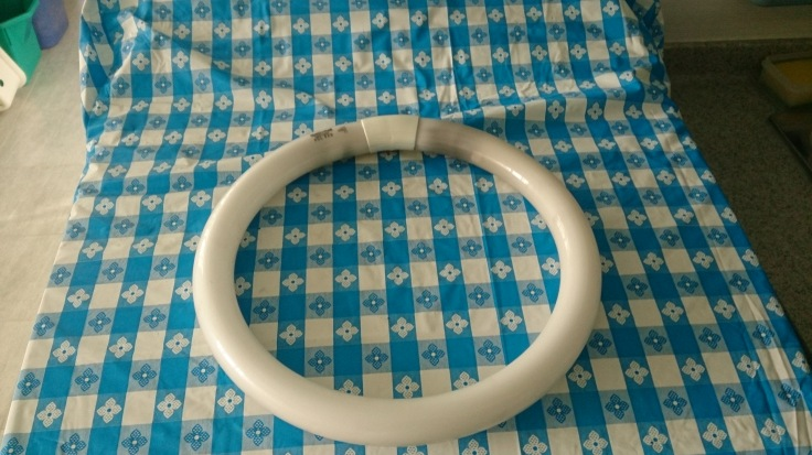 Circular fluorescent bulb sitting on my mother's washing machine