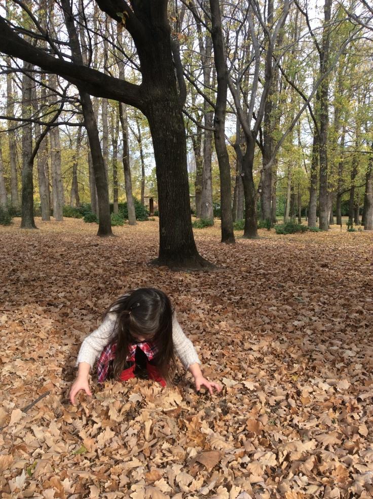 Arddun making autumn leaf pile
