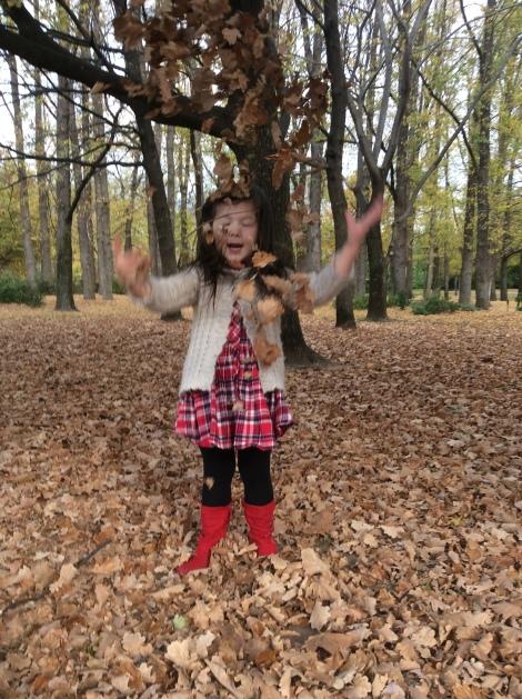 Arddun tosses leaf pile