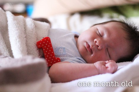IMG_2547-1-mth-old