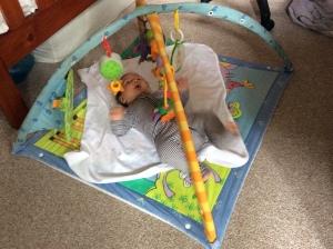 Atticus on playmat
