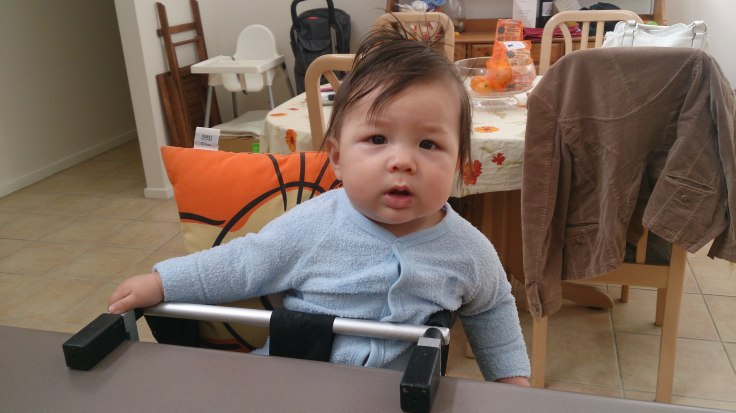 First time Atticus sits at kitchen bench